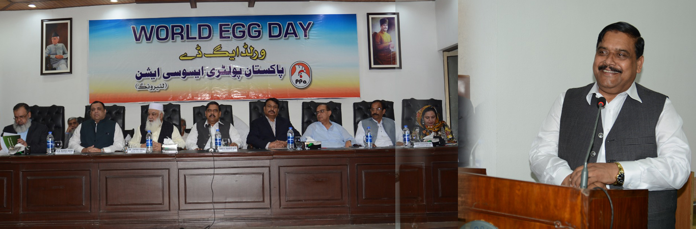 International Egg Day at FCCI On 11th October 2019